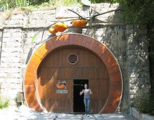 Tunnel Winery