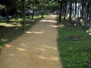 One of the many paths in the city